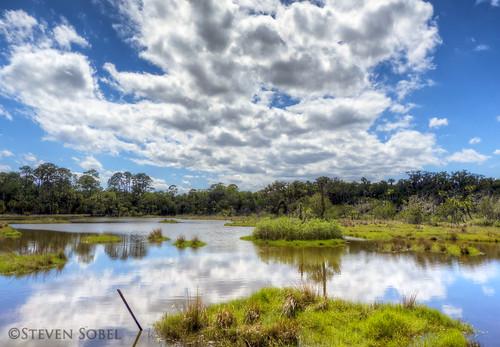 statepark lake clouds landscape pond florida hdr fz150 walterboardman bulowwoods