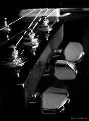 Acoustic Guitar Headstock Close Up