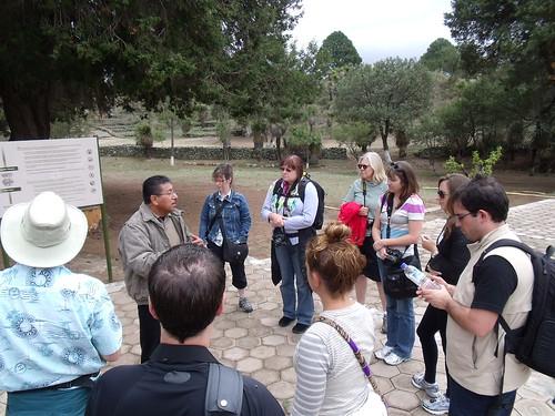 Cantona Archaeological Site (Cantona, Puebla)