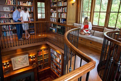 Dan Rubin library