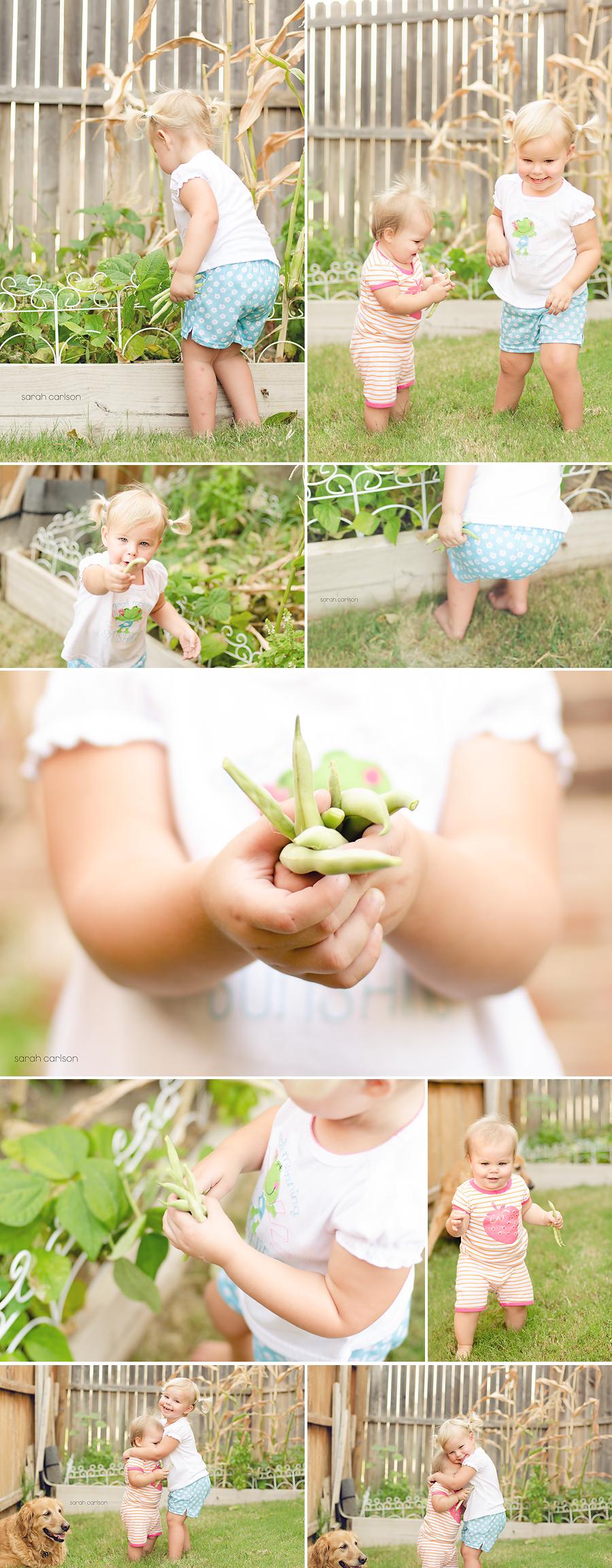 picking beans storyboard