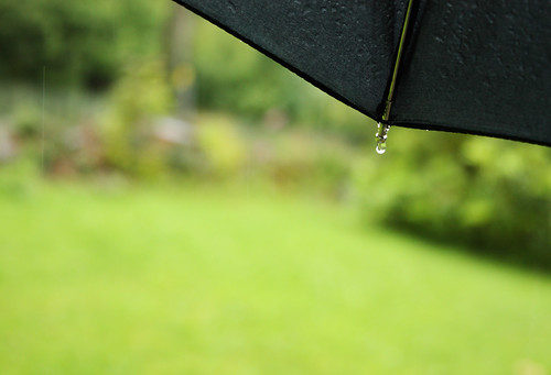 Rain, rain and more rain by Helen in Wales