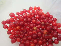 berry, red, frutti di bosco, produce, fruit, food, cranberry,