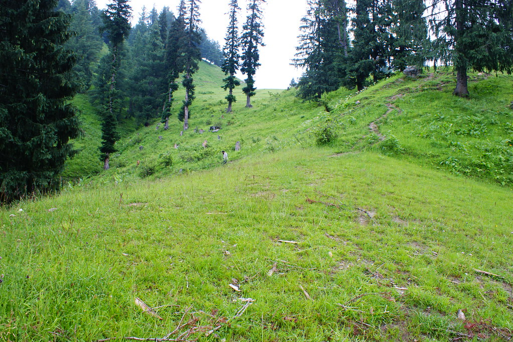 "MJC Summer 2012 Excursion to Neelum Valley with the great ""LIBRA"" and Co - 7596489798 2982c30ac6 b"