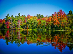 Beauchamp Lake Reflection, Fall Season