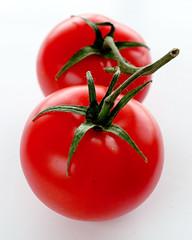 Tomatoes 042