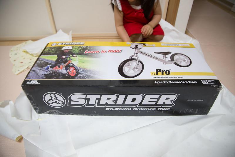 STRIDER_PRO-2