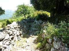 Arrivée vers le hameau de Cuccuracciu