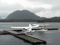 aviation, airplane, wing, vehicle, seaplane,
