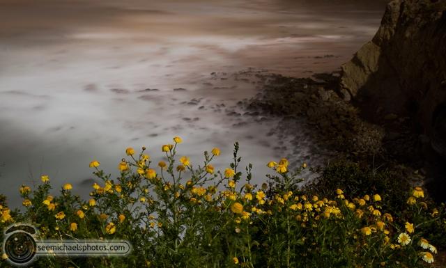 La Jolla at Night 40512 © Michael Klayman-004
