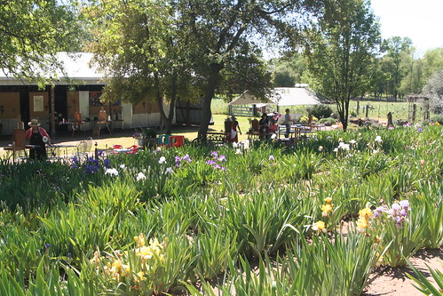 Plein Air Painting Workshop at Iris Farm