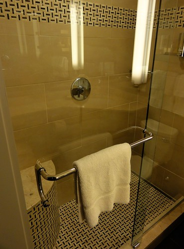 Shower in Bathroom at River View King Room at Royal Sonesta Hotel Cambridge Massachusetts