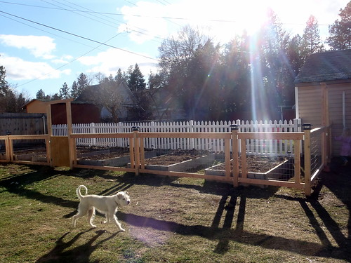 Garden fence complete(ish)