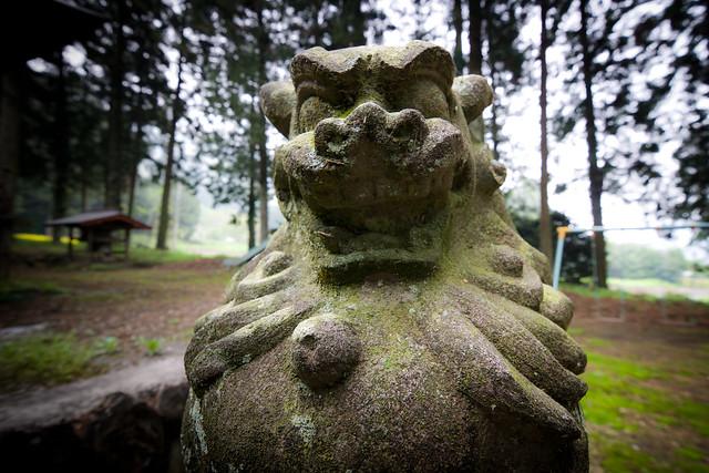 #28 The Giant Cryptomeria of Tenmanhoshinomiya Shrine