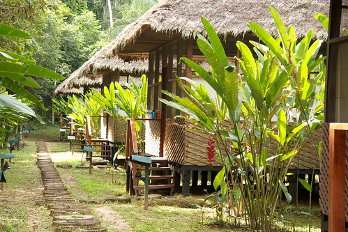 Heath River Wildlife Center, Tambopata Rainforest, Bolivia