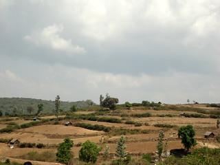 Terraced lands
