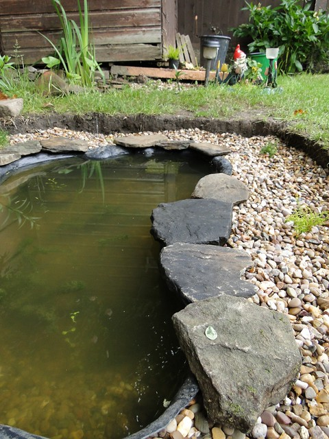 Wildlife Pond Natural Stone Edging Flickr Photo Sharing