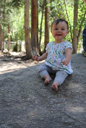 Jovie on a boulder 3