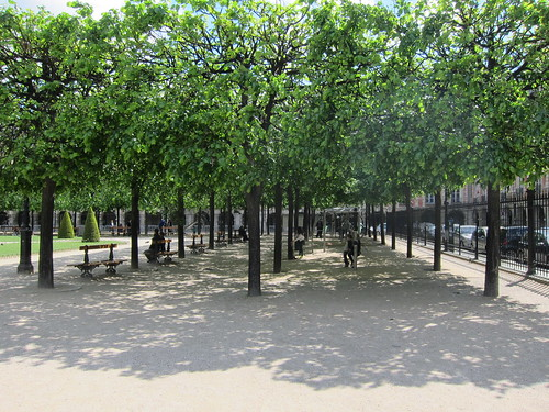 Regimented trees