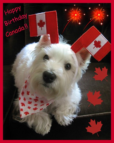 "6/12B ~ ""Proud To Be A Canadian"" by ellenc995"