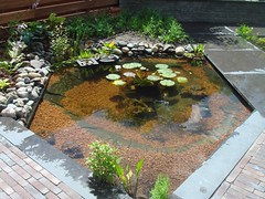 garden, water feature, yard, flagstone, reflecting pool, landscaping, walkway, pond,
