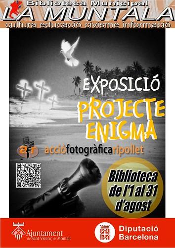 Exposició: Projecte Enigma @ de l'1 al 31 d'agost by bibliotecalamuntala
