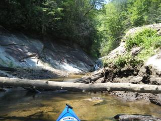Bear Camp Creek