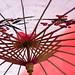 Spanish/Chinese umbrella
