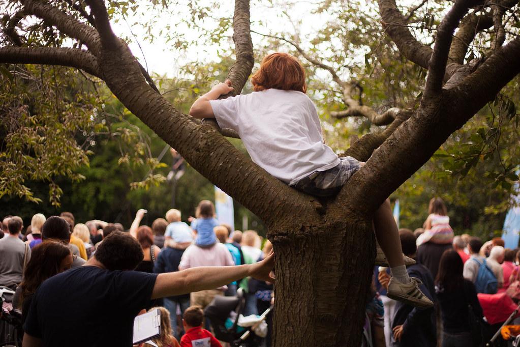 Kid Tree