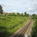 The view from the bridge in Brockley