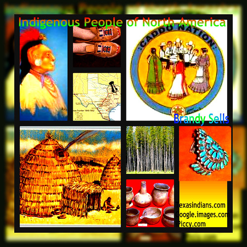 Terrific collage on the indigenous peoples of this region by trudeau