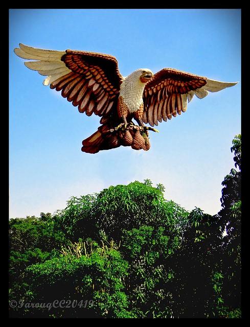 Panglima Perang Suku Dayak, Pangkalima Burung | I'm The