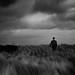 Bowler in the storm... by Martin(Tim) van der Veen