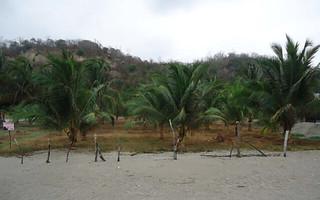 Coco-Beach-Ecuador