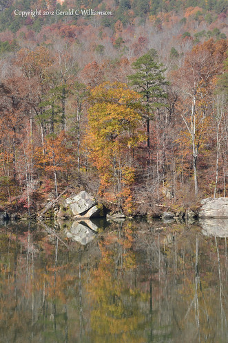 Fall Colors on the Tennessee River