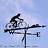 madcyclist5's buddy icon