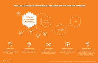 Figure 6: Element 2 - Digital Customer Experience (DCX)