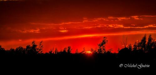 ca sunset © canada tree nature nikon exterior québec extérieur qc coucherdesoleil 2016 saintanicet michelguérin nikcollection googlenikcollection tousdroitsréservésallrightsreserved lightoomcc nikon200500mm