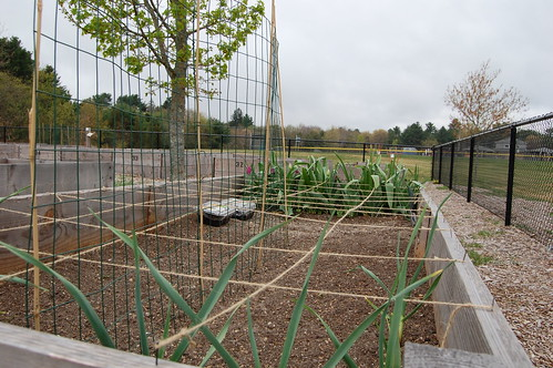 CommGardens_20120421 007