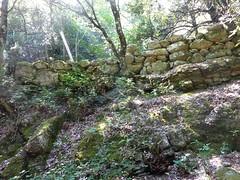 Dans la descente directe Bocca di Cateri - L'Agnu : arrivée vers l'Agnu