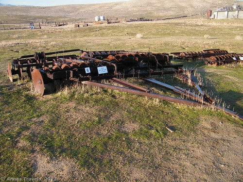 DYRR Off-set Disk at Traver Ranch in Carrizo Plain National Monument, California