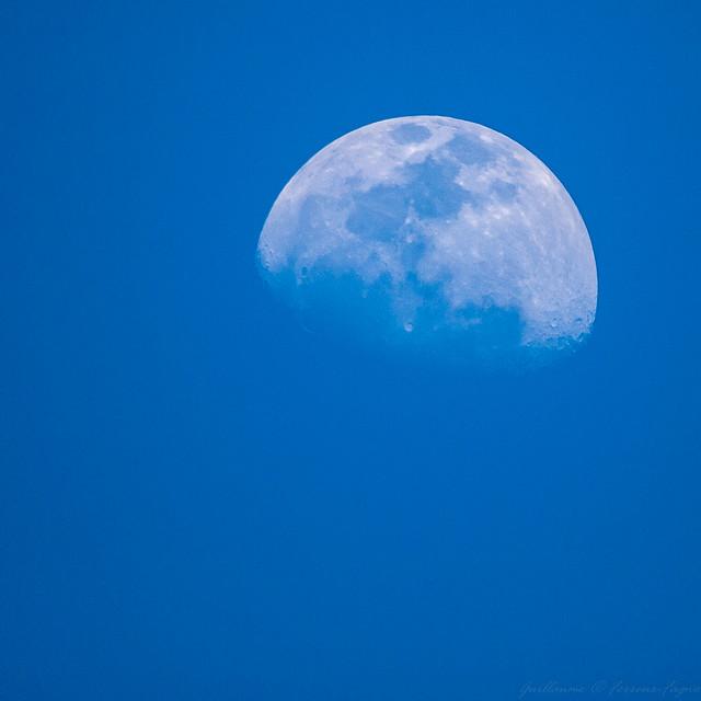 Lune bleue 7144725361_3c57c3048e_z