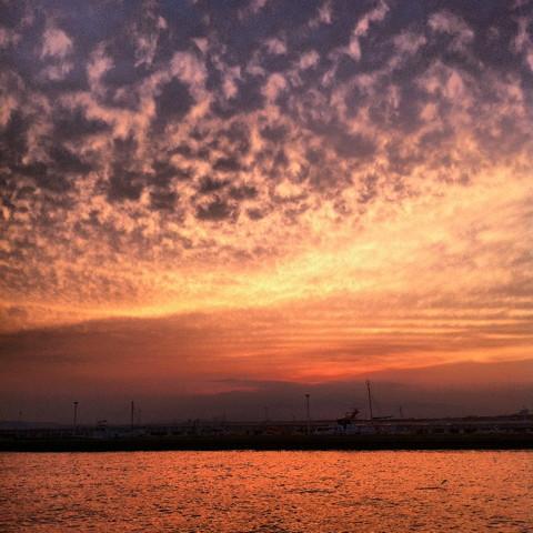 江の島の海を見に行く