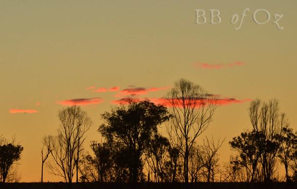 sunset_6884