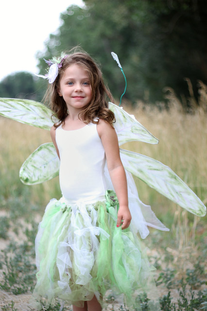 5292 little fairy