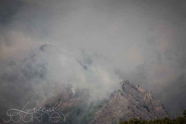 Alpine Quail Fire (11 of 33)