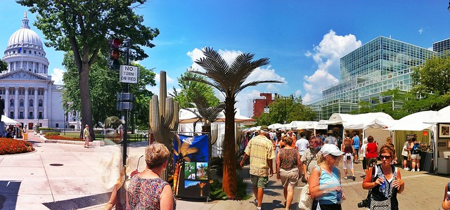 Fox News Was (Half) Right: We Do Have Palm Trees in Madison