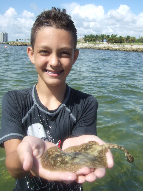 Grayton with a barbless yellow ray.