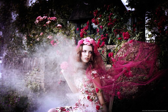 .bella. - whispers of a rose..
