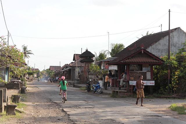 Bali Village Scene, Pejaten